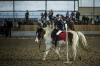 20151230_ZER_pony_games_trojanovice_019