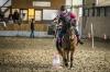 20151230_ZER_pony_games_trojanovice_077