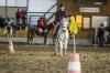 20151230_ZER_pony_games_trojanovice_078