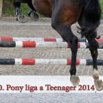 plakat Pony liga 14